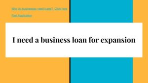 I need a business loan for expansion